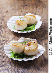 grilled scallops in shells on wood