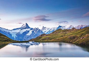 grindelwald, alpes, wetterhorn., bachalpsee, schreckhorn, mt., emplacement, vue, suisse, europe., vallée, alpin