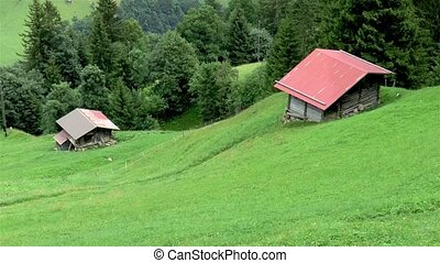 Isolated houses in the slopes of the Swiss Alps. Grindelwald First.