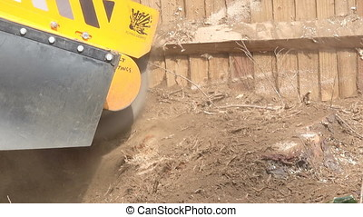 Grinding down old tree stump - A tree surgeon uses a stump...