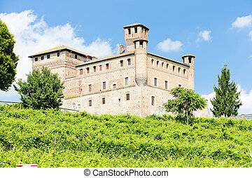 Grinzane Cavour Castle with vineyard, Piedmont, Italy