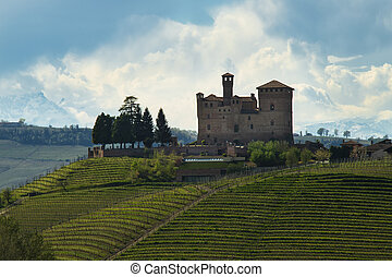 View on the Castle of Grinzane Cavour and the vineyards Langhe Piedmont Italy