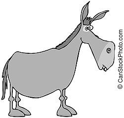 gris, burro