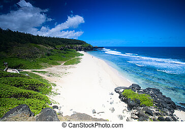 Beautiful white sand tropical beach. Gris Gris beach on Southern tip of Mauritius
