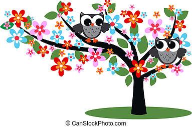 gris, hiboux, arbre, deux, séance