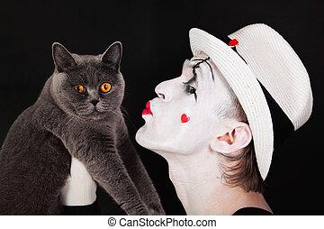 gris, mime, britannique, chat
