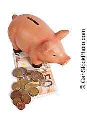 gris, piggy bank, hos, valuta euro, besparelserne, og, økonomi