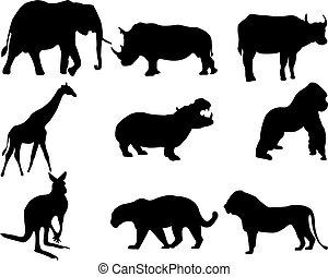 gris, siluetas, conjunto, animal, plano de fondo