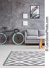 gris, sofá, y, elegante, bicicleta