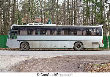 gris,  tour, autobus