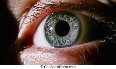 gris, vidéo, oeil, dilating, pupille, femme, macro