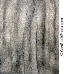 gris, vison, fourrure
