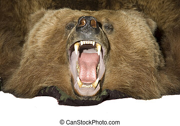 Grissly Bear - Taxidermy rug of a grissly bear with jaw open