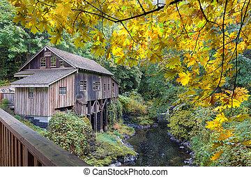grist, riacho, estação, cedro, outono, moinho