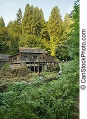 grist, riacho, histórico, cedro, floresta, moinho, ao longo
