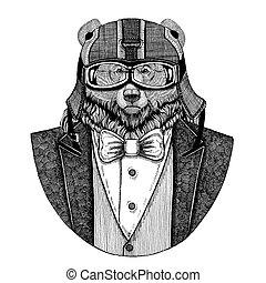 Grizzly bear Big wild bear Animal wearing jacket with bow-tie and biker helmet or aviatior helmet. Elegant biker, motorcycle rider, aviator. Image for tattoo, t-shirt, emblem, badge, logo, patch