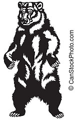 grizzly bear black white - grizzly bear stand up pose,black...