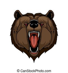 Grizzly bear head mascot, isolated wild predator
