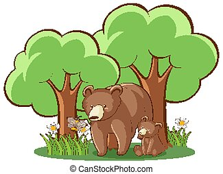 Grizzly bears on white background
