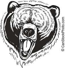 Grizzly Brown Bear Vector - The head of wild brown bear on ...