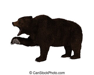Art et illustrations de grizzli 5 792 clip art vecteur - Dessin de grizzly ...