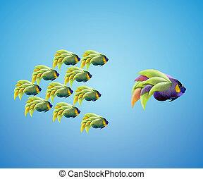 groß, angelfish, führen, gruppe, von, angelfish