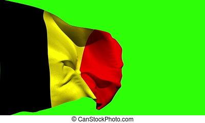 groß, belgien, national, blasen, fahne
