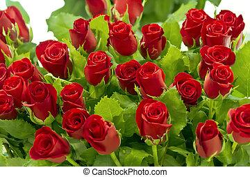 groß, blumengebinde, von, rote rosen