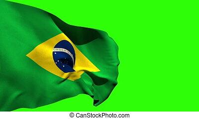 groß, brasilien, national, blasen, fahne