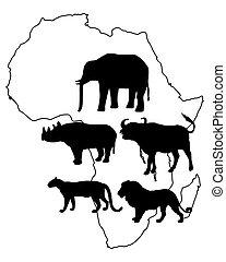 groß, fünf, afrikas