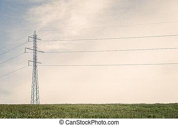 groß, masten, auf, a, grünes feld