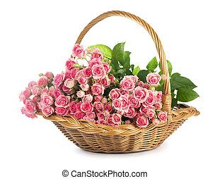 groß, rosen, bouquet., zweig, von, rosa, roses., freigestellt