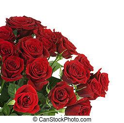 groß, rote rosen, blumengebinde, umrandungen