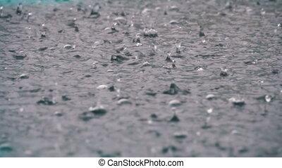 groß, tropfen, von, regenfall, in, a, pfütze, während, a, rainstorm., bewässern fallen, in, langsam, motion.