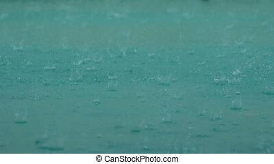 groß, tropfen, von, regenfall, in, a, pfütze, während, a, rainstorm., wasser, drops.