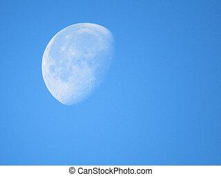 groß, weißer mond, aufschließen, aus, blauer himmel, in, der, abend