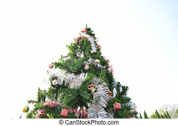 groß, weihnachtsbaum