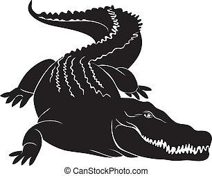 groß, zeichen., vektor, bild, krokodil
