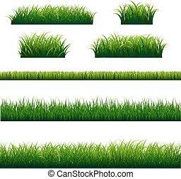 große blätter, satz, grünes gras