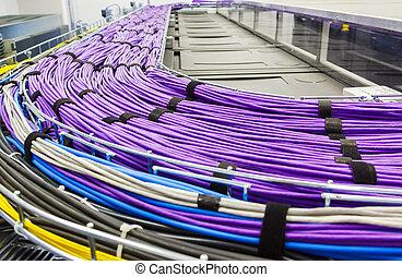 große gruppe, von, lila, utp, kabel