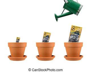 groei, financieel
