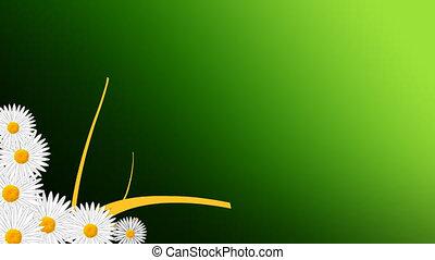 groeiende, bloemen, animatie