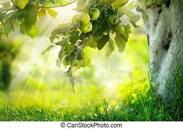 groeiende, branch., organisch, appel, appeltjes