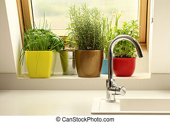 groeiende, keukenkruiden, keuken