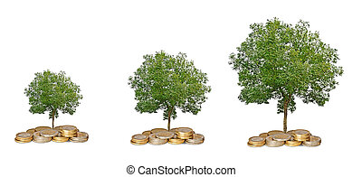 groeiende, muntjes, boompje