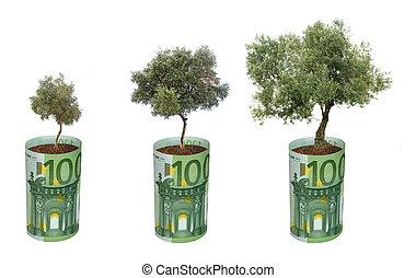 groeiende, olive, rekening, bomen, eurobiljet