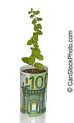 groeiende, plant, rekening, eurobiljet