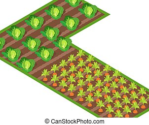 groeiende, terrein, wortels, kolen, steegjes