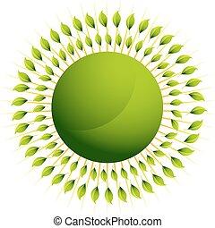 groen blad, zon