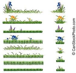 groen gras, en, bloemen, set